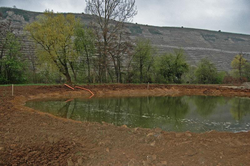 Mundelsheim Feuchtbiotop als Auslgeichsmaßnahme für Landstraße L - Beutke und Fränzel Gewässerbau
