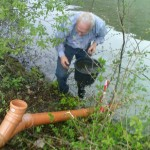 Aus dem 4 Meter tiefer gelegenen Neckar wird Wasser per Unterdruck zu den Teichen hochgesaugt - Beutke und Fränzel Gewässerbau